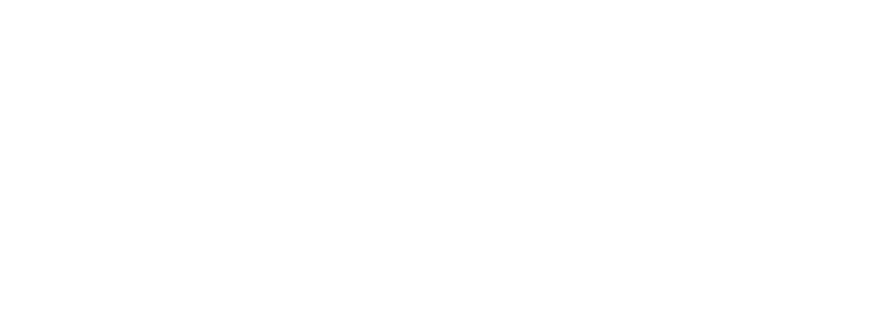 Turin Architects